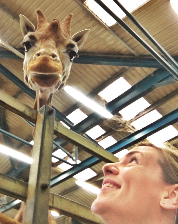 Selfie con la mamá jirafa