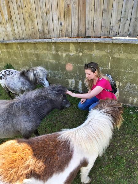 Rodeada de ponis adorables en Dartmoor