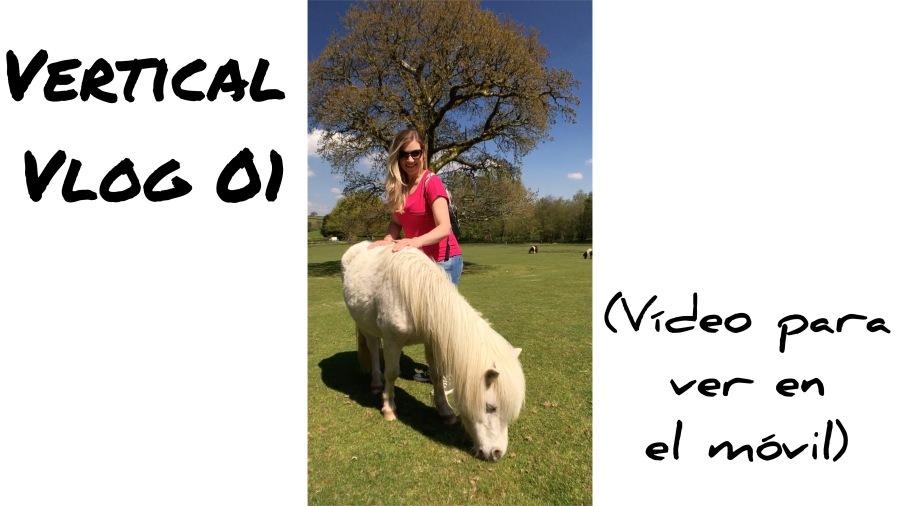 Vlog Vertical 01 Miniature Pony Center